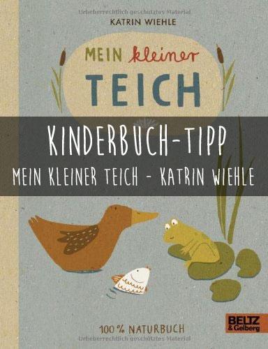 MeinKleinerTeich1